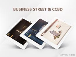 BUSINESS STREET & CCBD