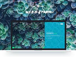 WEB日常farm_4