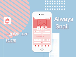always snail线框图