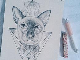 暹罗猫 纹身稿