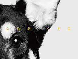 <大城小爱公益品牌视觉形象设计>江汉大学设计学院 小明 #青春答卷2015#