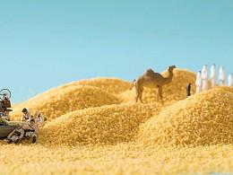小食材|大世界  五谷杂粮  杭州 上海美食摄影
