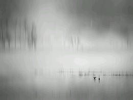 静静的念湖