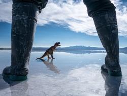 《天空之镜》和一头恐龙约了。 by 老飘飘