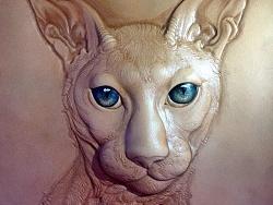 立体动物猫皮塑