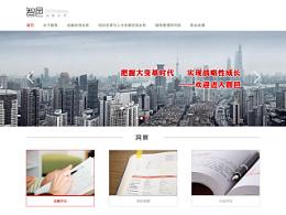 AnyForWeb视觉设计观察:智邑官方网站飞机稿