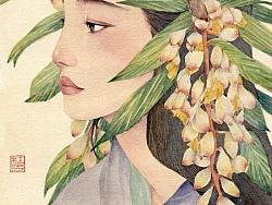 缟 by 红花HONGHUA
