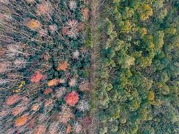 秋天的尾巴-青西郊野公园