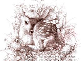 森系铅笔绘画——神奇动物园(一)