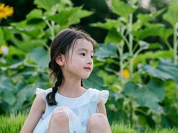 向日葵的想念—童话