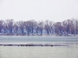 """北京""""冬宫"""""""