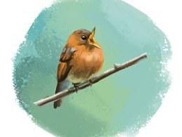夜深了,画个鸟。