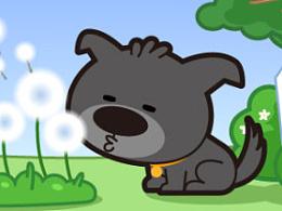 狗狗养护常识漫画