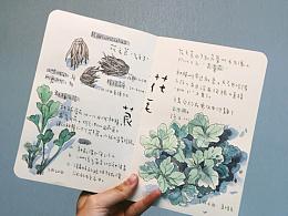 种植笔记(一)