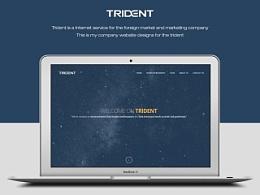 trident官网设计