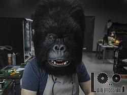 Animatronic 电子机械仿生大猩猩头(含视频制作流程)