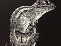 李子哥刮画作品《无名鼠辈》