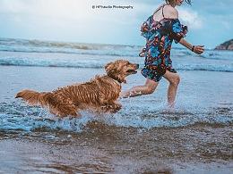 与狗狗的夏日时光