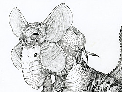 生物概念设计4