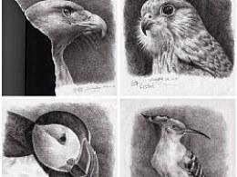 钢笔画鸟儿一组