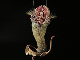 卡巴拉生命树之神秘生物