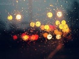 随拍-晨光雨滴