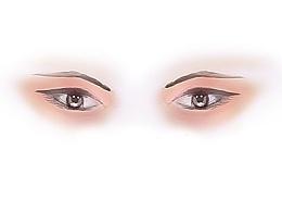 眼睛-人体部位手绘练习手绘板练习