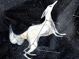 #2015新绘本# 冬夜星空卷~局部图+部分跨页图。。