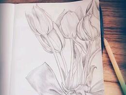 画点小植物