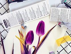 小花的水彩~双紫相惜~