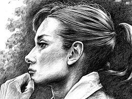 圆珠笔画 Audrey Hepburn