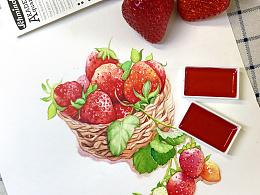 水彩手绘—【水果 草莓】
