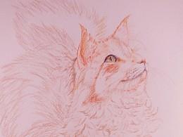 近期绘画练习