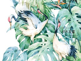 水彩 仙鹤绿境