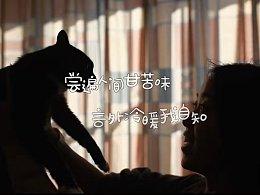 #中国同日领养日#流浪猫到底对她做了什么?