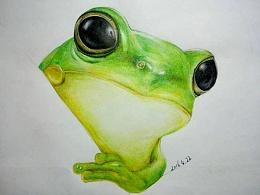 彩铅画----一只小青蛙