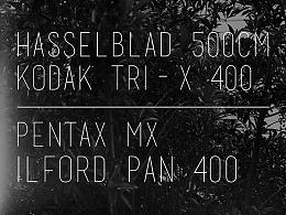 黑白上海 Kodak Tri-X 400 与 Ilford Pan 400
