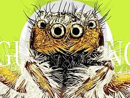 蜘蛛(虫6)