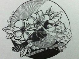Bird~