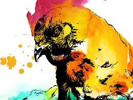 原创:水彩鸡