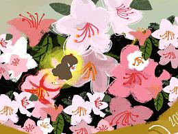杜鹃花·小仙子