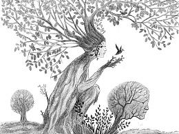 黑白图,树的故事