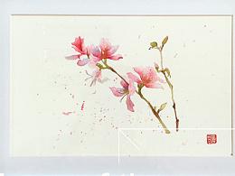 水彩:小花花们~