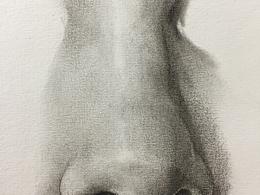 鼻子素描写实