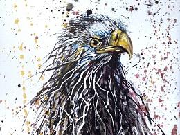 泼墨系列——《飞鹰2》