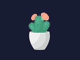 Ai插画-绘制多肉仙人球
