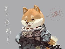 临摹-柴犬兵