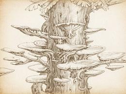 《幻灵童话》线稿2蘑菇森林