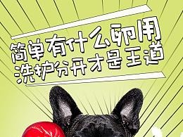 MOMOKA宠物洗护套装 - 产品策划分析