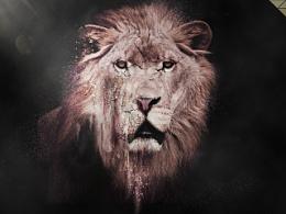 沙化狮子练习作